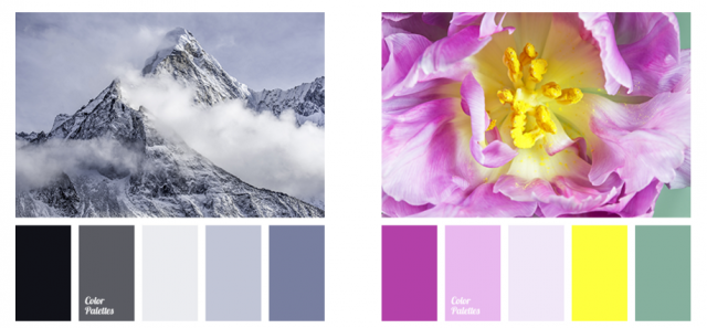 Color Palettes from Photos